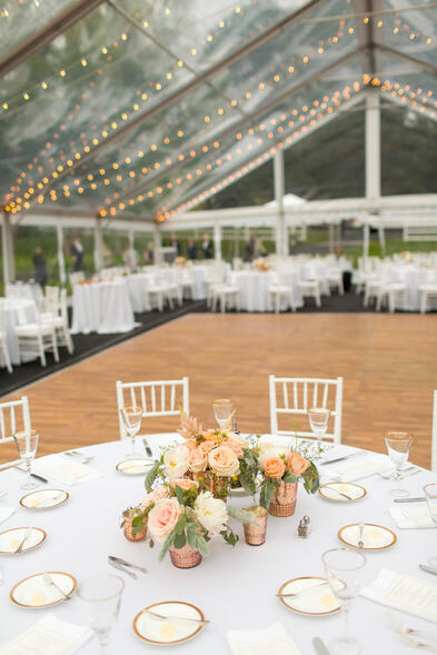 clear tent wedding