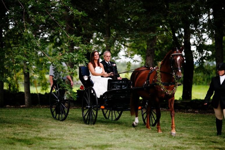 equestrian wedding