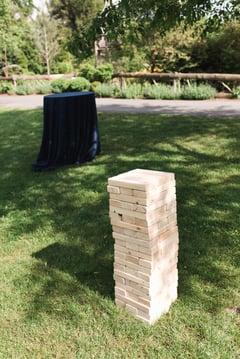 wedding brunch lawn games