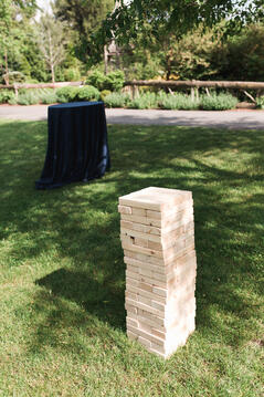 wedding brunch lawn games