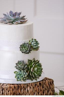 Succulant-weddingcake
