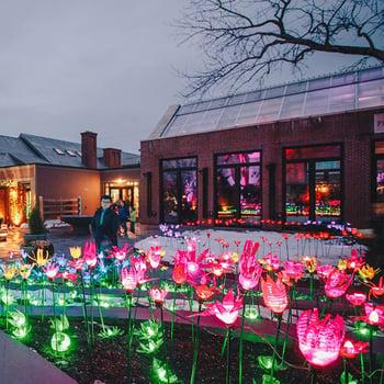 holiday venue link image