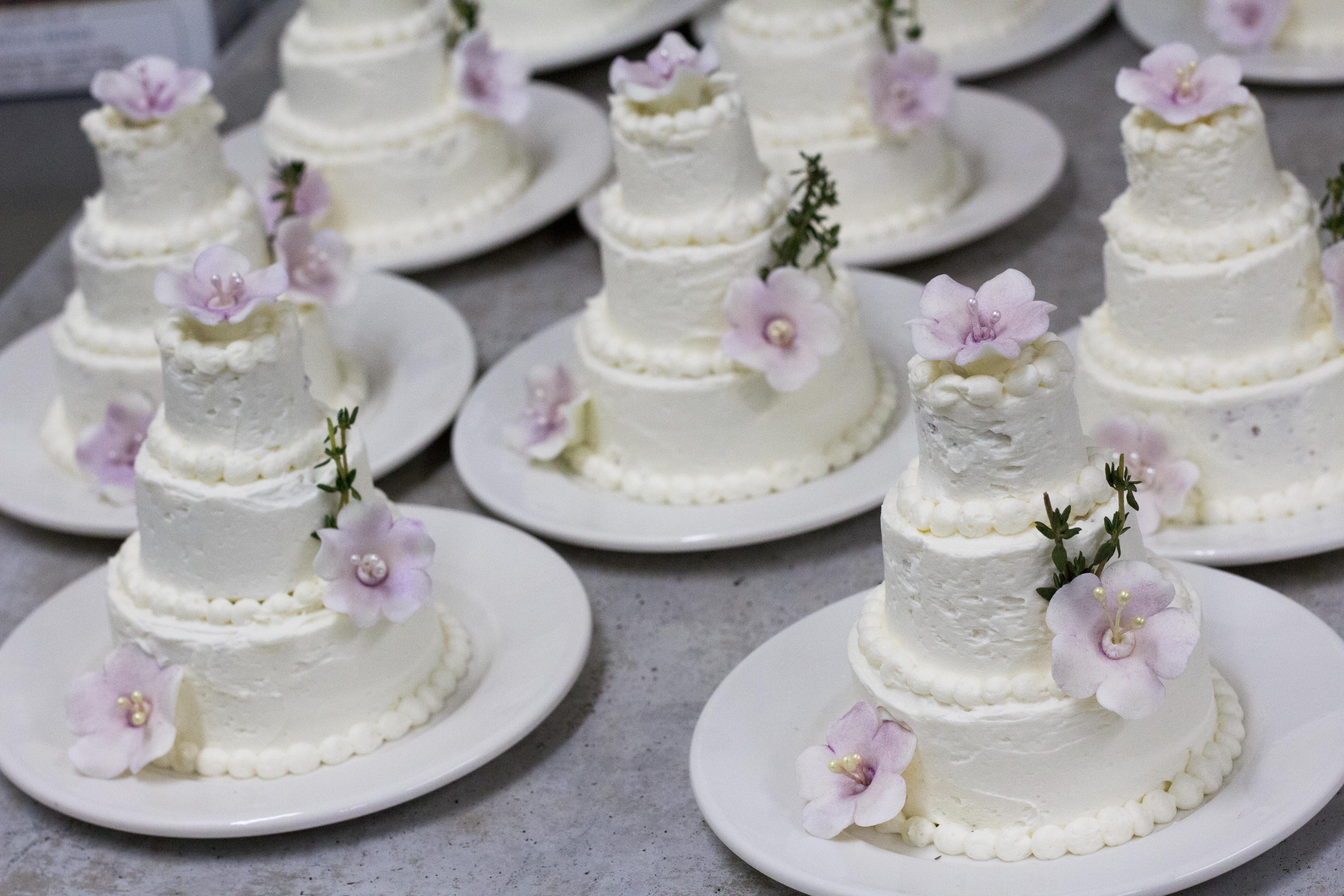 mini cake2-2978.jpg